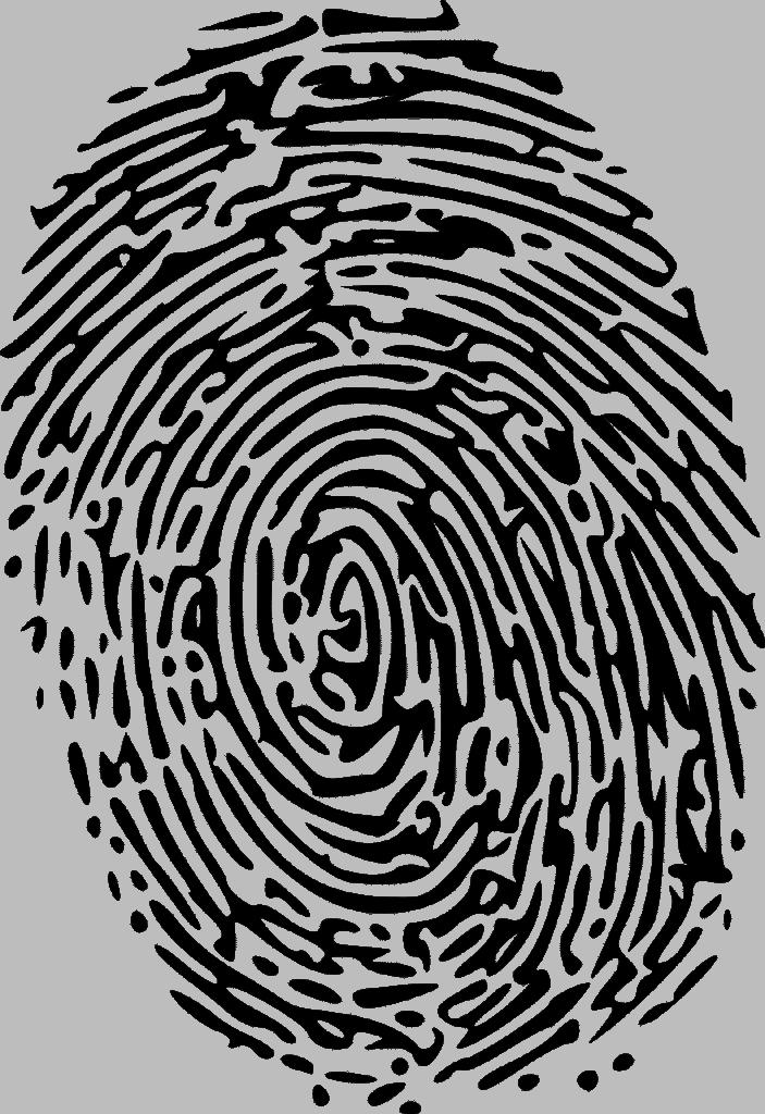 איך עובד התהליך של אבטחת מטבעות דיגיטלים באמצעות בלוקצ׳ין